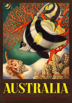The Great Barrier Reef Australian Vintage Travel Poster print by Eileen Mayo Tourism Poster, Poster S, Great Barrier Reef, Posters Australia, Australian Vintage, Cool Posters, Wpa Posters, Beach Posters, Railway Posters