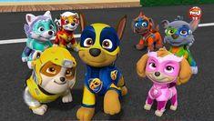Paw Patrol, la Pat'Patrouille en streaming direct et replay sur myCANAL Zuma Paw Patrol, Cloverfield 2, Super Adventure, Frozen Sisters, Parol, Baby Animals Super Cute, Disney Dogs, Halloween 2020, Furry Art