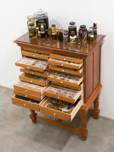 "Jean Vong/Courtesy of the artist and Tanya Bonakdar Gallery, New York Mark Dion, ""Travels of William Bartram Reconsidered"" cabinet, Bead Storage, Craft Storage, Jewellery Storage, Printers Drawer, Cabinet Of Curiosities, Deco Originale, Rock Collection, Displaying Collections, Cool Furniture"