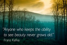 """""""Anyone who keeps the ability to see #beauty never grows old"""" - Frank Kafka #quote Helen Sanderson for Ministry of calm To find out more about our philosophy of calm, please visit our websites: ministryofcalm.com & helensanderson.com"""