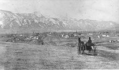 Man in horse-drawn buggy east of Colorado Springs Colorado ~ 1885
