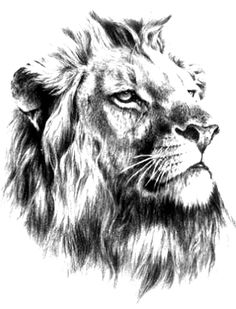 aslan_dovme_modeli.jpg (315×413)