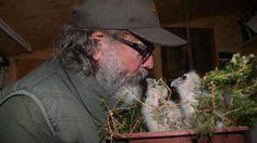 Später will Theo Omlor die Eulen-Art, die bis zu 40 cm groß wird, in die Vogelschau der Falknerei einbinden
