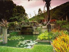 Discover the gardens of Roberto Burle Marx, a modernist landscape architect from Brazil. Take a virtual tour of Burle Marx's designs through the eyes of Richard Hartlage, an American landscape designer.