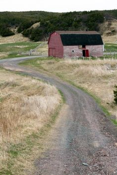 Road to the barn