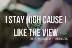 I don't actually get high, so calm down guys. But I did like the sentiment :)