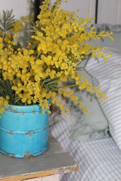 #Mimosa - Secret Love #bedroom #decor bouquet