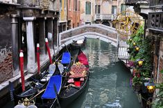 Venice by boat - Gondolas, vaporetti and traghetti Carnival 2015, Travel Album, Northern Italy, Future Travel, Months In A Year, Sicily, Where To Go, Travel Destinations, Tourism
