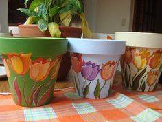 tulipas varios tonos