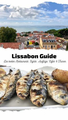Lissabon Guide | Die besten Restaurants, Sights, Ausflüge, Touren & Co. Lisbon Guide, Portugal Vacation, Restaurants, Food Bars, Around The Worlds, Travel, Europe, Traveling, Lisbon