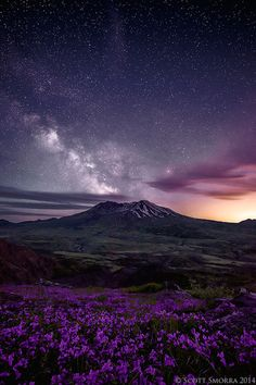 """Limitless"" The Milky Way and millions of other stars above Mt St. Helens and a field of summer wildflowers. Mt St. Helens, National Volcanic Monument."