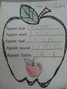 Life Is Sweet....In Kindergarten!: An apple a day.....