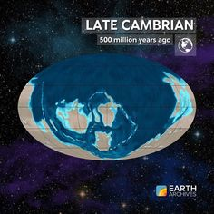"""the mystery surrounding the infamous cambrian explosion """"it is hard for us paleontologists, steeped as we are in a tradition of darwinian analysis, to admit that neo-darwinian explanations for the cambrian explosion have."""