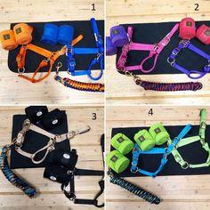 Tack, Html, Belt, Accessories, Fashion, Horse, Tips, Belts, Moda