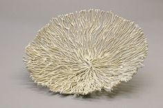 My name is Nathalie Domingo. At the age of I decided to become a ceramicist, and I will never regret this choice. My work is centered on the porcelain filament, I ma. Porcelain Ceramics, Ceramic Bowls, Ceramic Pottery, Ceramic Texture, Textile Texture, Ocean Texture, Surface Art, Big Vases, Incredible Gifts
