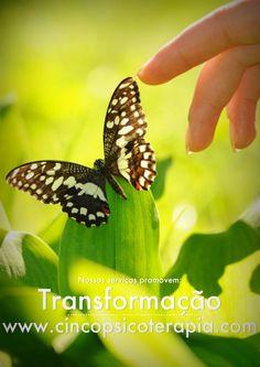 Transformação  www.cincopsicoterapia.com