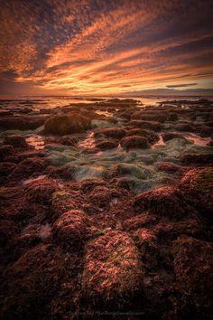 Last nights amazing coastline at negative tide Sunset Cliffs San Diego [0C][2048x1365]