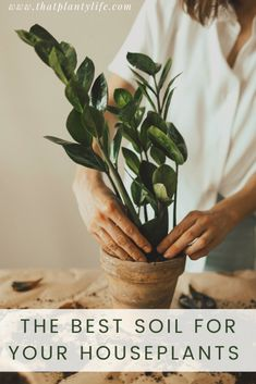 How to Make Houseplant Soil Perfect for Your Tropical Plants | www.thatplantylife.com Best Indoor Plants, Outdoor Plants, Indoor Garden, Veg Garden, Garden Tips, Garden Projects, Garden Plants, House Plant Care, Plants