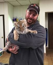 Image result for tiger cub holding Cute Tiger Cubs, Cute Tigers, Cute Baby Animals, Cute Babies, Cats, Image, Gatos, Cat, Kitty