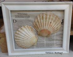 Cuadro de conchas y papel de periodic de #farmacia Montagut. #handmade #decoracion