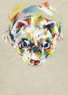 Ferret III Art Print