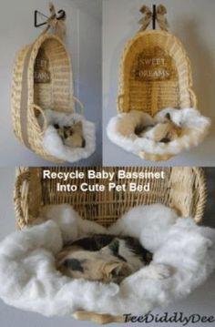 bassinet cat bed Unique Animals, Cute Animals, Gato Gif, Gatos Cats, Cat Enclosure, Baby Bassinet, Baby Crib, Cat Condo, Cat Room