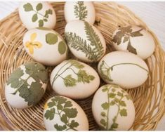 Natural Easter egg dying - must try!very simple and elegant.Easter and Spring Green Theme, Egg Designs, Pretty Designs, Art Party, Easter Party, Egg Decorating, Clever Diy, Holiday Crafts, Holiday Ideas