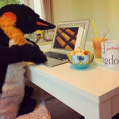 mr pungu getting ready for work with a great breakfast (quinoa, fruit, juice & green tea) and reading the latest news about fish sticks. how's your morning? #breakfast #goodmorning #sunnymorning #starbuckscup #spongebob #quinoa #greentea #juice #freshjuice #vitamins #healthyme #healthypungu #macbook #penguin #penguins #pinguin #pinguine #pinguino #pinguinos #pinguim #pingouin #pingüino #ペンギン #пингвин #펭귄 #instabird #antarctica #stuffedanimal #pingu #penguinlove #pinguinito