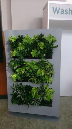 LiveDivider from Suite Plants. www.suiteplants.com  Greenbuilding in Washington 2015