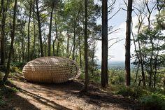 Pabellón escultural permanente Perspectives es un pabellón orgánico cubierto de tejas de cedro en Winterfold +fotos:
