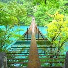 Somewhere in Shizuoka Pref.