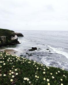 Santa Cruz CA: Bye Santa Cruz!  by designxfive