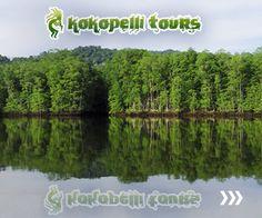 Kokopelli Wildlife Mangrove Tour