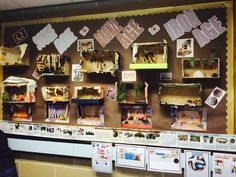 Bronze/Stone/Iron age caves made out of shoe boxes and displayed