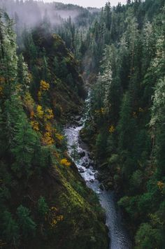 The Best Hiking Routes You Have To Experience In California The best hikes in California.The best hikes in California. Landscape Photography, Nature Photography, Travel Photography, Photography Jobs, Photography Lessons, Photography Hashtags, Photography Backdrops, Mountain Photography, Photography Camera