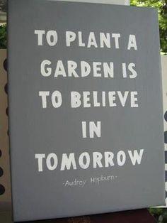 #garden #believe #plant #quote