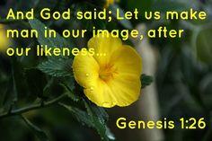 Genesis 1:26