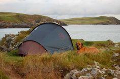 Reisen mit Hund- die besten Spontantrips. Teil 2: Großbritannien- ab auf die Insel