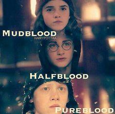 Mudblood,Halfblood & Pureblood