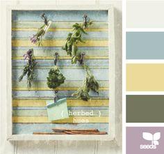herbed hues -- soft palette for kitchen? Hue Color, Colour Pallette, Colour Schemes, Color Combos, Web Design, Design Seeds, Coordinating Colors, Color Swatches, Color Theory