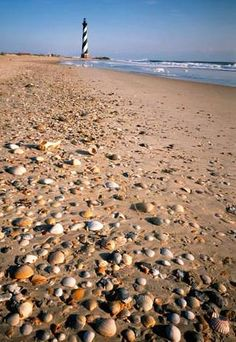 Our Beach Weddings Outer Banks section focuses on one of the most romantic places for getting married. Get Destination Weddings Outer Banks NC info and more. Outer Banks North Carolina, Outer Banks Nc, South Carolina, Outer Banks Vacation, Carolina Beach, Vacation Spots, Nc Lighthouses, North Carolina Lighthouses, Cape Hatteras Lighthouse