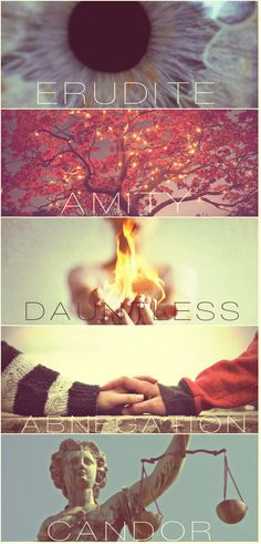 The Factions of Divergent. Erudite. Amity. Dauntless. Abnegation. Candor.
