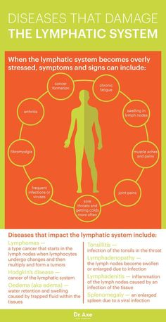 Lymphatic system graphic - Dr. Axe