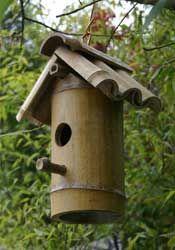 casa de passarinho bambbú
