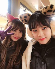 "- BLΛƆKPIИK  ""[180222] Jisoo's ch+ update . . . #블랙핑크 #blackpink #ブラックピンク #제니 #jennie #lisa #rosé…"""