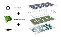 Image 2 of 8 from gallery of These Floating Farms Could Be Key to Feeding Future Populations. Courtesy of Forward Thinking Architecure What Is Greenhouse, Greenhouse Farming, Home Greenhouse, Greenhouse Growing, Hydroponic Gardening, Hydroponics, Hydroponic Systems, Aquaponics System, Vertical Garden Wall
