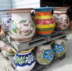 View Our Pottery and Bamboo Plant Gallery | Pottery Express & Bamboo Farm