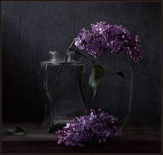 ◆photographer: Vladimir Dranitsin