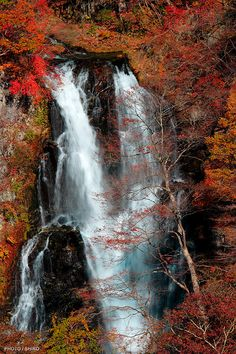 Kirifuri Falls in Autumn, Tochigi, Japan - I do love falling water.
