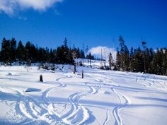 Amazing Powder | Bachledova Ski, Slovakia for #SundayTraveler